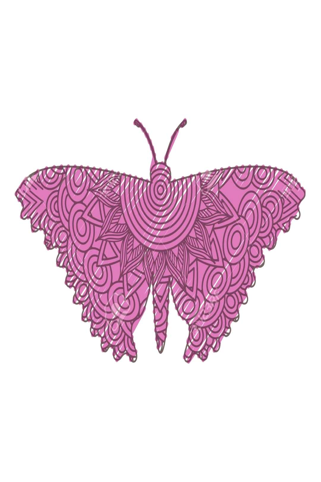Hand Drawn For Adult Coloring Pages With Moth Bug Vector Illustration